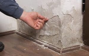 a wall that needs Damp Proofing